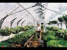 Make Your Own Homemade Hydroponics Nutrients - Hydroponic gardening is becoming increasingly popular these days. By growing plants in water and nutrient solution you can save time money and space while enjoying year round plants. source via Tumblr ift.tt/2jl464p http://ift.tt/2k2YQmB