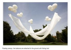 Floating canopy. Giant balloons with fabric attaching. Held up with fishing line.. genius...