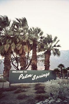 Palm Springs - My mom loved it here! She said it reminded her of me and told me to make sure I went one day, so I am definitely going to do that. <3