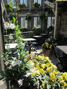 Terrasse du Jardin Nelson http://www.123terrasse.fr/Jardin-Nelson #coffee #bar #restaurant #soleil #terrace #Montréal #spot #sun #jardin #garden