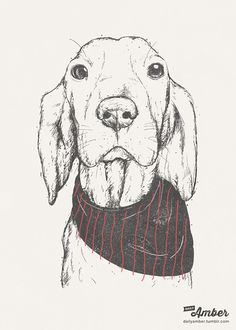 My dog #illustration http://dailyamber.tumblr.com