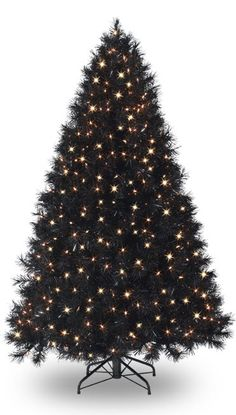 Black Christmas Trees (http://blog.hgtv.com/design/2012/11/23/daily-delight-black-christmas-trees/?soc=pinterest)