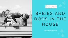 Babies and Dogs in The House Baby Blog, Expecting Baby, New Baby Products, Articles, Babies, Dogs, Babys, Pet Dogs, Baby
