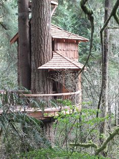 From simple tree house plans for kids to the big ones for adult that you can live in. If you're looking for tree house design ideas, read this article. Cool Tree Houses, Fairy Houses, Play Houses, Houses Houses, Building A Treehouse, Building A House, Simple Tree House, Patio Grande, Tree House Plans