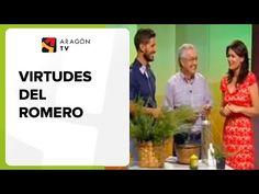 Virtudes del romero - YouTube Tips Belleza, Medicine, The Creator, Sandro, Youtube, Wrinkle Remedies, Knee Pain Remedies, Knee Pain, Medical