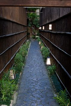 Japanese garden by Toshi