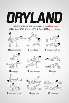 Dry Land Swim Workouts, Workouts For Swimmers, Volleyball Workouts, At Home Workouts, Stretches For Swimmers, Swim Workouts For Triathletes, Bike Workouts, Cycling Workout, Swimming Drills