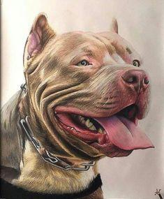 Dogs pitbull tattoo 59 New Ideas Pitbull Drawing, Pitbull Terrier, Dogs Pitbull, Dog Paintings, Dog Tattoos, Dog Portraits, Beautiful Dogs, Dog Art, Animal Drawings