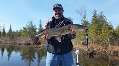 Spring Pike fishing the Belgrade Chain of Lakes with Twin Maple Outdoors  Call Today to Book at 207-907-9151