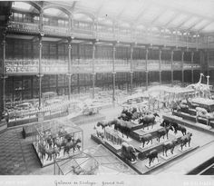 Galerie Grande, Muséum National d'Histoire Naturelle, Paris - Natural History Museum, Grand Hall, old photograph, interior architecture, animal display, taxidermy