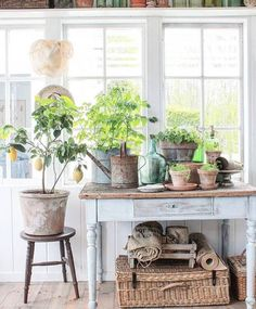 Home and design inspiration from Love Grows Wild