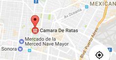 """Ahora cambian nombre a Cámara de Diputados en Google Maps    Por unas horas durante la noche del lunes y parte de la madrugada de este martes, San Lázaro se convirtió en la """"Cámara de Ratas"""".  Usuarios de redes sociales reportaron el cambio en el nombre de la ubicación de la Cámara de Diputados en el servicio de navegación Google Maps."""