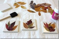 DIY: Homemade Leaf Coaster Craft - Confessions of a Homeschooler Leaf Crafts, Glue Crafts, Diy Crafts, Handmade Crafts, Thanksgiving Crafts, Fall Crafts, Crafts For Kids, Fall Leaves Crafts, Homemade Coasters