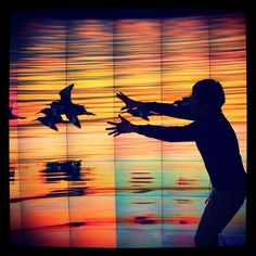 Chasing birds in the iPearl Immersion Theater by Kimberly Dufresne. First Place winner of the My #HuntLibrary photo contest.
