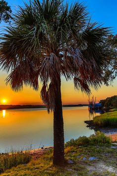 Loved sitting on the water's edge watching the sun set and the dolphins close to shore.  The most relaxed spot on earth!  Beaufort SC