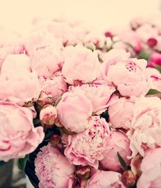 Stunning Florals, Beautiful Nature, Peonies, Outdoor & Indoor Decor, Light Pink