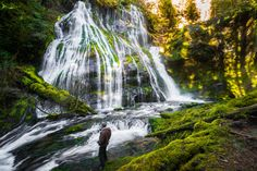 Panther Creek Falls might be the most beautiful hike in the Pacific Northwest