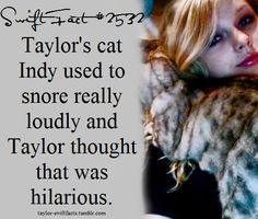 taylor swift facts Taylor Swift Blog, Taylor Swift Concert, Taylor Swift Facts, Taylor Swift Quotes, Taylor Swift Pictures, Taylor Alison Swift, One & Only, Album Releases, Interesting Facts