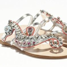 seahorse shoe