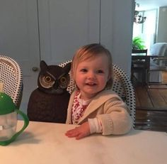 """""""She loves owls in general,"""" Rebecca said. 