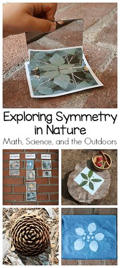 Finding Symmetry in Nature (Outdoor Math Activity for Kids) Exploring Symmetry in Nature: Hands-on math and science activity for kids of all ages using leaves, pinecones, flowers, and other natural materials. Symmetry Activities, Science Activities For Kids, Nature Activities, Math For Kids, Stem Activities, Science Projects, Outdoor Preschool Activities, Symmetry Math, Science Games