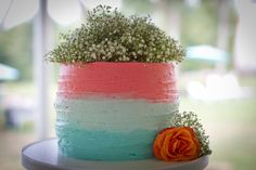 Wedding Cake, Pink Blue Babys breath  Amber Yanovich Photography | Jackson, MI