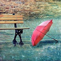 Who needs an umbrella!