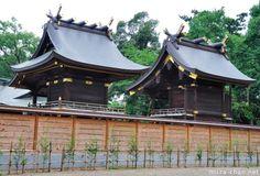 Japanese Traditional Architecture, Chigi and Katsuogi