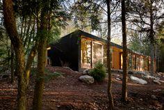 matte black metal siding, big glass windows/doors with timber frames