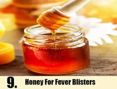 Fever Blisters Home Remedies Natural Treatments & Cures | Search Home Remedy