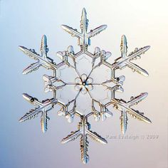 ❄۞Φ Fractals Φ۞❄ ~ Snowflakes! Many beautiful and amazing images of real snowflakes by Pam Eveleigh. Includes traditional flakes such as this one as well as geometric shapes: hexagons, triangles and even trapezoids. Schnee Tattoo, Snowflake Pictures, Inspiration Artistique, Ice Crystals, Snow And Ice, Winter Beauty, Winter Wonder, Patterns In Nature, Winter Scenes