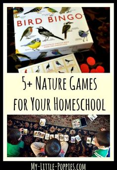 5+ Nature Games for
