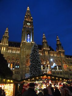 Vienna Christmas Market, Austria - I will never forget walking round here in the snow, so magical! Vienna Christmas, Christmas In The City, Christmas Markets Europe, Winter Christmas, Oh The Places You'll Go, Places To Travel, Places To Visit, Innsbruck, Las Vegas Hotels