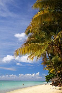 ☀ Trou aux Biches | Mauritius ☀ (http://www.facebook.com/BeautyOfMauritius)