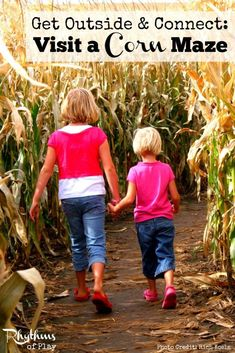 Visit a Corn Maze - a classic fall outside activity. Fun for either a class field trip or a family adventure. Click through to find out everything you need to know to visit a corn maze this season.