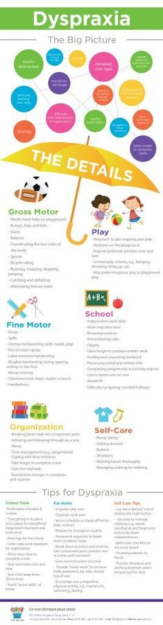 Dyspraxia_infographic Pinned by Pediatric Therapeutic Services, Inc. Check out our blog at http://pediatrictherapeuticservices.wordpress.com