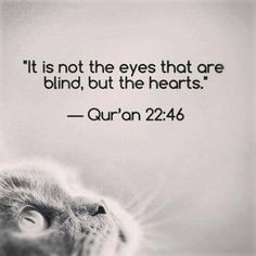 Islam Freedom Offers the UK's Best Hajj and Umrah Packages Allah Quotes, Muslim Quotes, Religious Quotes, Arabic Quotes, Islamic Quotes, Arabic Memes, Imam Ali Quotes, Hindi Quotes, Quran Quotes Inspirational