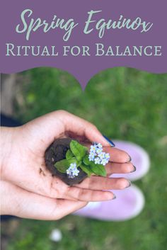 Spring Equinox Ritual for Balance | The Witch of Lupine Hollow