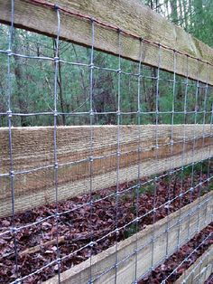 4x4 Sheep Wire Fence Attached To 4 Board Fence Short