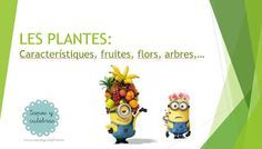SAPOS Y CULEBRAS: LES PLANTES I LES FRUITES