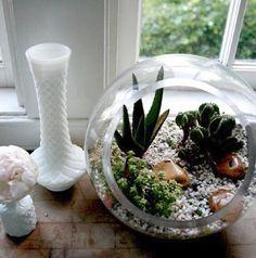 Fish bowl, another beautiful way to use it. Little Gardens, Small Gardens, Diy Home Furniture, Garden Terrarium, Unusual Plants, Succulent Arrangements, Decorated Jars, Plantar, Garden Inspiration
