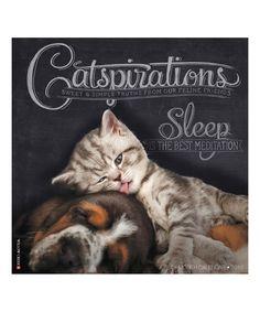 Love this 'Catspirations' 2017 Wall Calendar by Willow Creek Press on #zulily! #zulilyfinds