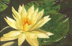 Image result for water lily painting