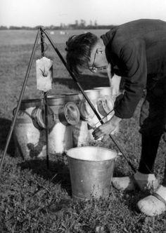 W.P.W. van de Hoef | Melkbussen in een weiland in Groningen.1 augustus 1947.