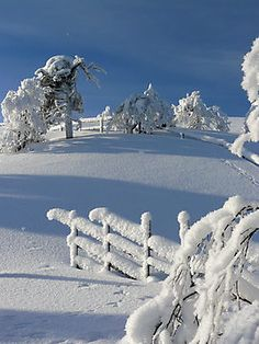 Winter by ilpo laurila This is when I love winter. Beautiful.