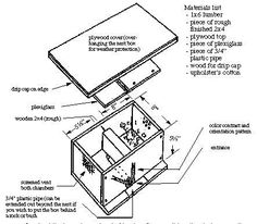 Bumble bee box - bumble bee nests (6)