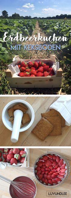 Erbeerkuchen ohne backen // schnell gemacht mit Keksboden #erdbeeren #erdbeerkuchen #kuchen #sommer #früchte #obstkuchen #ohne #backen #ofen #ohnebacken #keksboden #butterkekse #schnell #einfach #lecker