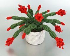 Most current Pic crochet amigurumi cactus Thoughts PDF Christmas Cactus amigurumi potted plant CROCHET PATTERN Crochet Puff Flower, Crochet Cactus, Crochet Flower Patterns, Crochet Flowers, Cactus Plante, Crochet Motifs, Hat Crochet, Irish Crochet, Christmas Cactus