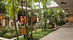 Top Malls and Shopping Areas in Miami