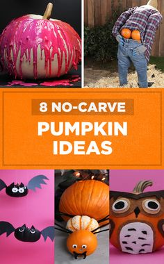 8 No-Carve Pumpkin Ideas   // #halloween #halloween2017 #halloweenfood #halloweendecor #nifty #diy #pumpkins